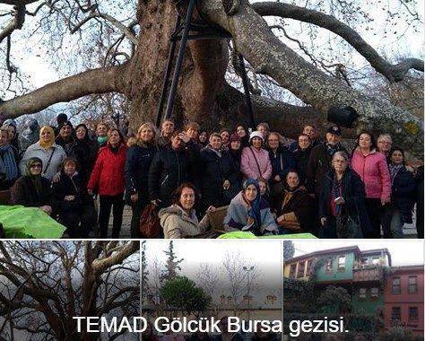 TEMAD Gölcük Bursa gezisi.